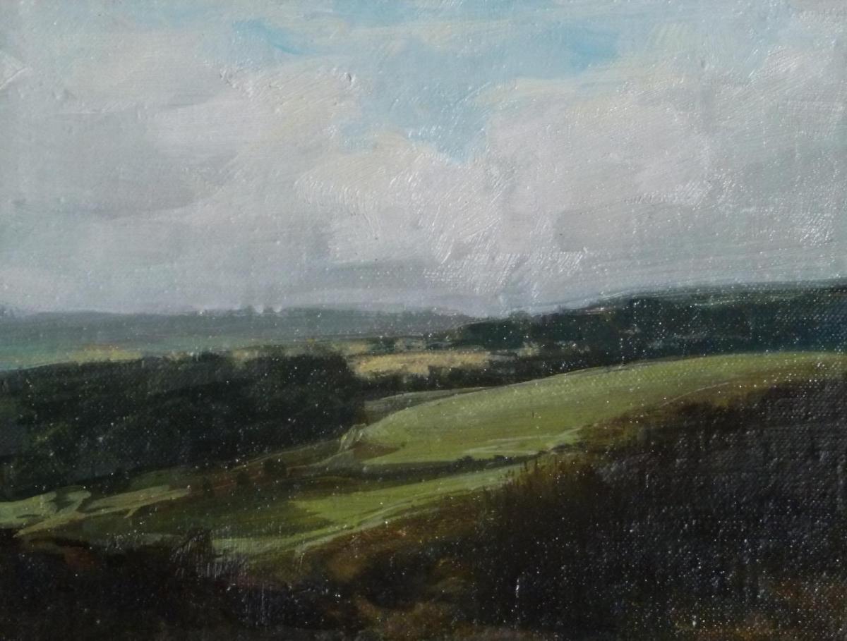 oil painting by Rebecca Payn 'Sunlit Field'